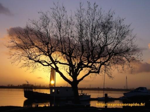 expresso-rapido-artiste-photographe-photographes-photos-paysages-nature-3